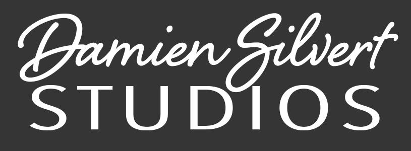Damien Silvert Studios